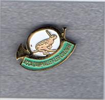 Pin´s  Chasse  ACCA  DAMPVALLEY - LES - COLOMBE  ( 70 )  Avec  Un  Animal  Lièvre  Et  Un  Cor  De  Chasse - Associations