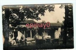 Br - 44 - OUDON - Marleziliere - Ferme  - Chevres - Cheval - Carte Photo - - Oudon