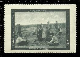 Old Original Hungarian Poster Stamp (advertising Cinderella,reklamemarke ) Lake Balaton Hungary - Fishing Angeln See - Erinnophilie