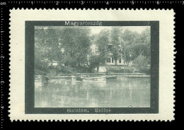Old Original Hungarian Poster Stamp (advertising Cinderella,reklamemarke )Lake Balaton - Siófok Ship Boat Lake Boot See - Bateaux
