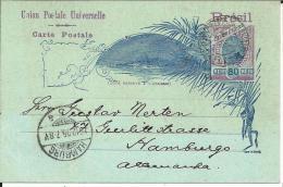 BRA145/ BRASILIEN -  Ascher 23bII Hafen Von Rio. Ausgabe1895. Bereits 1896 Durch Neue Ausgabe Ersetzt! Auslandskarte! - Lettres & Documents