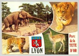 Lyon (69) - Parc De La Tête D´Or - Jardin Zoologique - Quelques Vues (2) - Lyon