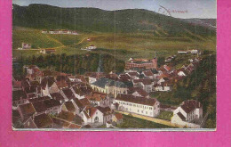 SCHIRMECK    -   * VUE GENERALE  *   -   Editeur : Emil HARTMANN De Strassburg - N° 29035 - Schirmeck