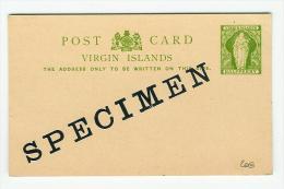 VIRGIN ISLANDS ENTIER POSTAL CARTE  SPECIMEN  POSTAL STATIONERY - Iles Vièrges Britanniques