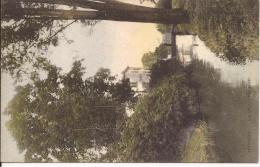 OTTIGNIES: La Dyle Paysage - Ottignies-Louvain-la-Neuve
