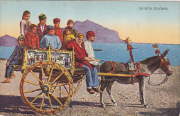 Carretto Siciliano, Donkey, Sicily, Italy, 1900-1910s - Italy
