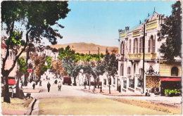 Pf. TIZI-OUZOU. Boulevard Bauprètre Et Banque De L'Algérie - Tizi Ouzou