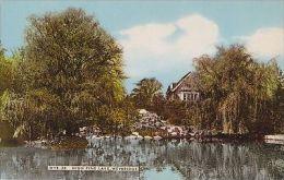 WEYBRIDGE - HIGH PINE LAKE - Surrey