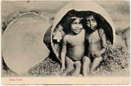 ( Inde ? ) - Early Birds (bébés Dans Oeuf) - Inde