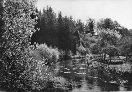 CPSM  -   SAINT - FRAIMBAULT - Sur - PISSE  (61)  Le Pont Des Planches  - (Prise De Vue Différente ) - Non Classés
