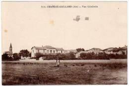 Château-Gaillard, Vue Générale (biplan Dans Le Ciel) - France