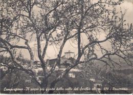 Lucca - Camporgiano - Il Paese Piu Fiorito Della Valle Del Serchio M. 470 - Lucca
