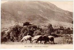 Culoz, Château De Fléchère (moutons) - France
