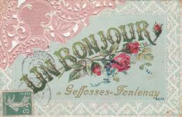 UN BONJOUR DE GEFOSSES FONTENAY (14)  (GEFFOSSES FONTENAY - Frankrijk