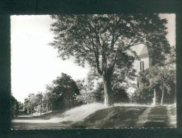 CPSM - Cales (Lot 46) - Eglise Et Avenue ( Cartes MYS) - Autres Communes