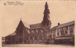 Hasselt 66: Eglise St Quentin - Hasselt
