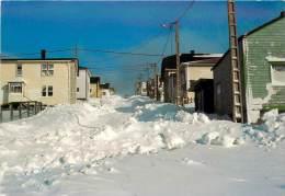 SAINT PIERRE ET MIQUELON  SAINT PIERRE LA RUE MARCEAU EN HIVER - Saint-Pierre-et-Miquelon