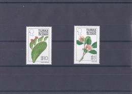 Turks Et Caiques  Série Courante  Feurs - Turks & Caicos
