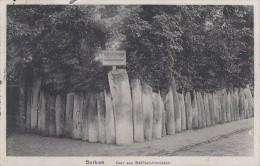 AK Borkum Zaun Aus Walfisch - Kinnladen Gelaufen 19.8.13 - Borkum