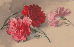 Cpa Oeillets - Signé C. Klein -  Meissner & Buchleipzig Künstler Postcarten Série 1832 Photocolor Nelken Ges. Desch - Klein, Catharina