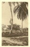 Gabon. L'escalade D'un Cocotier . - Gabon
