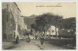 LODEVE (HERAULT - 34) - CPA - BOULEVARD DE LA BOUQUERIE - Lodeve