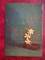 Flower Composition, Ikebana - Three Stars - Daffodils - Cotoneaster - 1980 - Estonia USSR - Unused - Non Classés