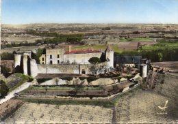 CPSM  -   ARBIS    (33)   Le Chateau De  Benauges - Cadillac