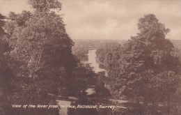 View Of The River From Terrace , RICHMOND (Surrey), England, UK, 1900-1910s - Surrey