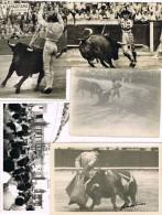 3651. Lote 5 Fotos Originales Años 50. TOROS, Corrida, Torero - Sin Clasificación