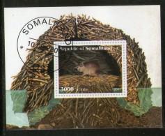 Somalia 2001 Rat Rodent Wild Life Animals Fauna M/s Cancelled # 3793 - Knaagdieren