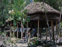 (020) American Samoa Islands - Fale - Samoa Americana