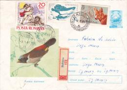 "BIRDS""NESINA DUTRESNEI"",1966, REGISTERED COVER STATIONERY,ENTIERE POSTAUX, ROMANIA - Roofkatten"