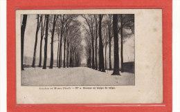 MARCQ-en-BAROEUL (59) / ECOLES / COLLEGES / Collège De Marcq / Avenue En Temps De Neige / Précurseur - Marcq En Baroeul