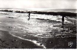 CP - PHOTO - CAP FERRET - LE BAIN DANS LES VAGUES - 568 - L.CHATAGNEAU - France