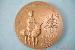 Médaille Commémorative 50émé Fêtes Du Citron.Menton 5-15 Février 1983 Bronze Signée P.Lovy.Dia:7 Cms - Otros