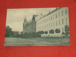 TILDONK - THILDONCK  -  Pensionnat Des Religieuses Ursulines   -  Vue Prise Du Parc   -  1919 - Haacht