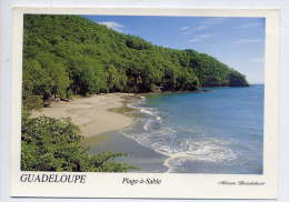 Guadeloupe--BOUILLANTE--Plage De La Basse-Terre ,cpm 039 éd Munkaprint - Guadeloupe