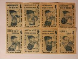 Czechoslovakia 8 Old Matchbox Labels - Boites D'allumettes - Etiquettes