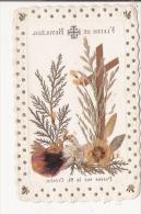 IMAGE PIEUSE AVEC FLEURS (REELLES) DE BETHLEEM  POSEES SUR LA SAINTE CRECHE - Vieux Papiers