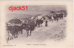 BISKRA (Algérie) - Caravane En Marche - Hommes / Chameaux - 1909 - Biskra