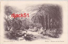 BISKRA (Algérie) - Chemin De Sidi Barkat - 1909 - Biskra