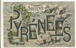 SOUVENIR DES PYRENEES - Souvenir De...