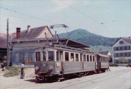 Chemin De Fer Schaffhouse, Train En Gare De Siblingen Photo Privée 1964 (446) - SH Schaffhouse