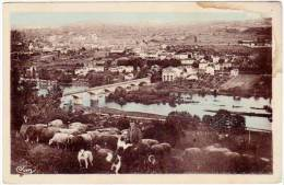 Retournac - Vue Générale (moutons, Berger, Chien) - Retournac