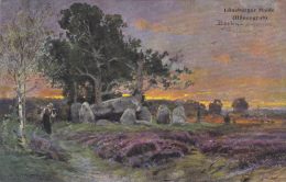 Lunebuger Haide (Hunengrab) . Germany , PU-1903 - Lüneburger Heide