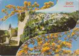 CPM.  BIOT  Centre Artistique De Côte-d'Azur. - Biot