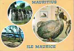 CPM.   ILE MAURICE.     Rochester Fall - Roches Noires -  Le Dodo. - Cartes Postales