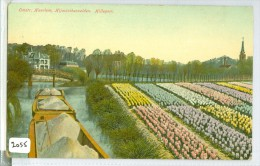 BLOEMBOLLENVELDEN HILLEGOM * ANSICHTKAART * CPA * (2055) GELOPEN  IN 1915 VAN HILLEGOM NAAR NOORD-BEEMSTER * NVPH NR 55 - Pays-Bas