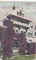 California Santa Barbara Bouganvillea Vine Hotel Potter